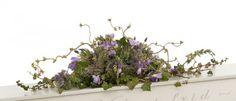 Kullamark-Allmogegra-stor Flowers, Plants, Plant, Royal Icing Flowers, Flower, Florals, Floral, Planets, Blossoms