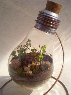 Light Bulb Terrarium 29 04 11 by ~Kosmu on deviantART