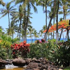 888-308-1817 to find your Hawaii dream home Ken Gines Realtor http://kengines.hawaiimoves.com http://schofieldbarracks.goarmyhomes.com  @moving2hawaii #kenfucious