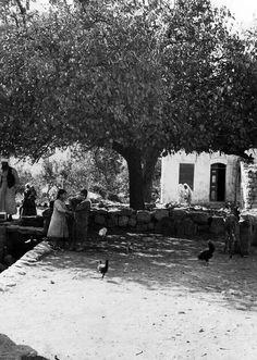 Gaza Strip 1930