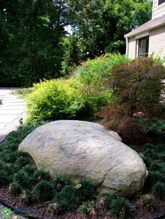 Boulders add a sense of permanence to the landscape