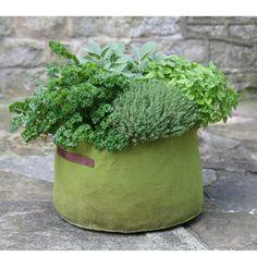 Deze stoffen planttas zorgt voor een sterke wortelstelsel voor de meer productieve planten. Het materiaal wordt al jaren gebruikt door fruittelers… en dan nu ook voor de tuinliefhebbers. Zeer geschikt voor het kweken van verschillende soorten kruiden.