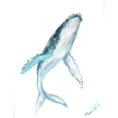 Humpback Whale, Original watercolor painting, 12 X 9 in, vertical... ❤ liked on Polyvore featuring home, home decor, wall art, photo painting, whale painting, photo wall art, animal paintings and ocean home decor
