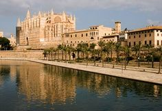 Where to eat out in Palma