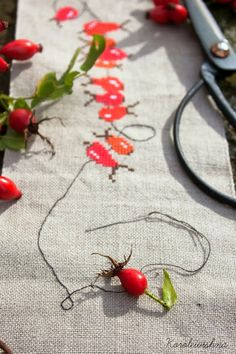 How cool is that, the real needle and thread with rosehips
