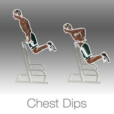 Chest Workouts On Pinterest Chest Workouts Anatomy And