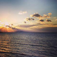 « Il y a l'efficacité du typhon qui emporte tout sur son passage, mais il y a aussi l'efficacité de la sève qui fait pousser. » (Albert Camus)