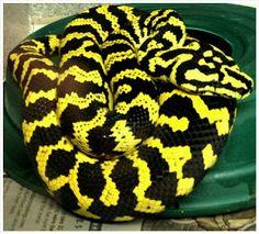 O Palhetas na Foz: Três cobras apreendidas pela GNR em Santana, Figue...