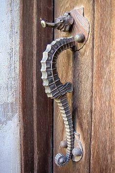 Sea horse door knob