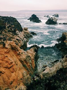 Headland Cove, Point Lobos State Reserve, California