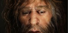 How we should thank archaic humans like Neandertals and Denisovans for our allergies andboosted immune systems. #genetic #neanderthal