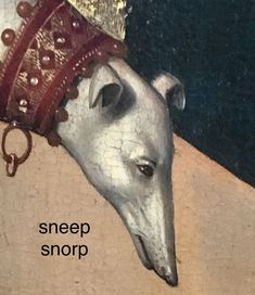Sneep snorp doggo of the dark ages lol All Meme, Stupid Funny Memes, Haha Funny, Hilarious, Memes Humor, Reaction Pictures, Funny Pictures, Gavin Memes, Quality Memes