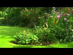 How To Be A Gardener S02E03 Cottage Garden part 1 YouTube