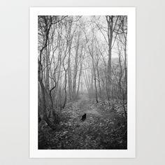 Black cat alone in the forest Art Print by Bartosz Ostrowski - $16.00