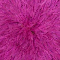 Mulberry Color  #Mulberry #Color #Texture Mulberry Color, Color Of The Day, Color Names, Texture, Surface Finish, Pattern