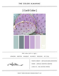 Color Almanac vol. v