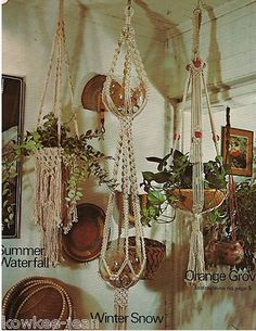 Macrame hanging pots.