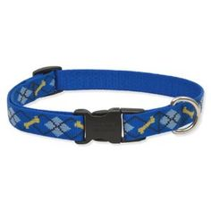 possible puppy collar before he grows into the trout one