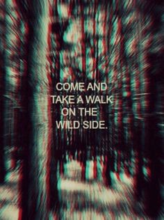 Come and take a walk on the wild side