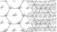 Hexagonal Spacing for intensive planting...think of the bee's!