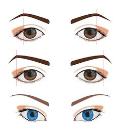 Eyebrow rules for downturned eyes and upturned eyes
