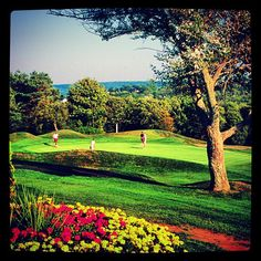 #NovaScotia #Golfing at the #DigbyPines! #Canada #BayofFundy #Golf #Vacation #EastCoast #Digby #PicoftheDay