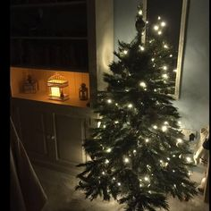 on Insta Web Viewer Days Till Christmas, Xmas, Christmas Tree Pictures, Christmas Decorations, Holiday Decor, Have A Great Day, View Photos, Happy Friday, Posts