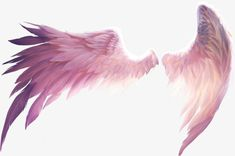 Beautiful wings PNG and Clipart Angel Wings Drawing, Angel Wings Art, Picsart Png, Art Sketches, Art Drawings, Wings Png, Wings Wallpaper, Angel And Devil, Anime Angel