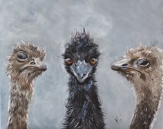 """""""George, it seems we have a Ring-in"""" by Julie Hollis. Paintings for Sale. Quirky Art, Weird Art, Australian Artists, Acrylic Painting Canvas, Paintings For Sale, Online Art Gallery, Pet Birds, Original Art, Owl"""