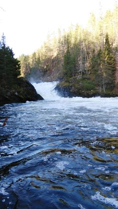 Oulangan kansallispuisto Norwegian Wood, Lake Beach, Scandinavian Countries, Marimekko, Helsinki, Amazing Nature, Trekking, Natural Beauty, Tourism