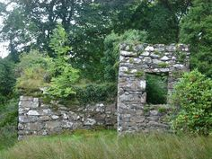 Free stock images of Old stone ruins with the remnants of a wall and window being reclaimed by leafy foliage and vegetation Privacy Walls, Historic Properties, Old Stone, Stone Work, Free Stock Photos, Garden Design, Scenery, Backyard, Outdoor Structures