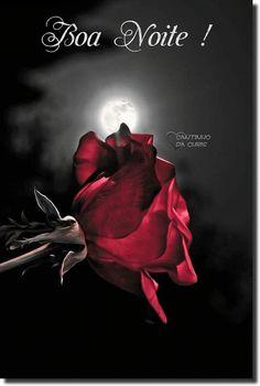 Gif De Flor Rosa Vermelha Com Brilhinho Escrito Com Carinho Cris