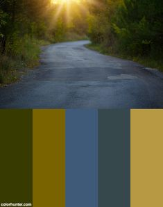 Sunshine Path On A Windy Road   (free Cc Usage With Credit Link To Liveoncelivewild.com) Color Scheme from colorhunter.com