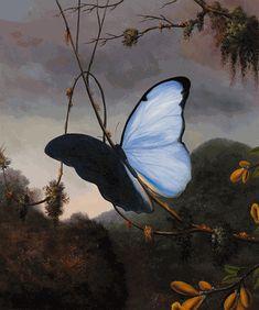Heade - Blue Morpho Butterfly