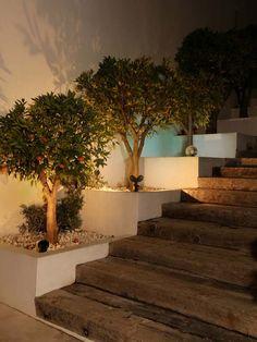 La iluminación de la entrada es muy importante para acentuar detalles y dar un toque de calidez al hogar.
