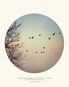 Caged Birds by Tina Crespo