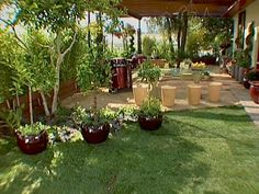 steps to putting in a outdoor kitchen Diy Network, Decks And Porches, Beautiful Kitchens, Get Started, Pools, Backyard, Outdoor Decor, Plants, Pictures