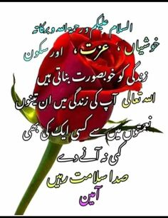 Sweet Good Morning Images, Good Morning Beautiful Gif, Beautiful Morning Messages, Good Morning Messages, Good Morning Greetings, Beautiful Dua, Beautiful Islamic Quotes, Emotional Quotes With Images, Love Images With Name