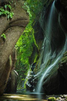 Yufugawa gorge, Oita, Japan #Green #緑