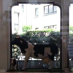 Photo by pattcal  #moschino #mymoschino