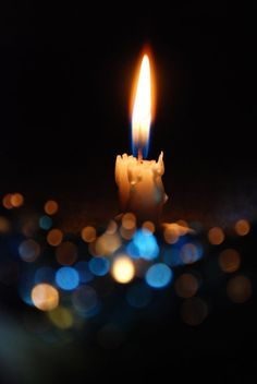 Light a Candle and remember all of the beautiful animals who lost their lives today.