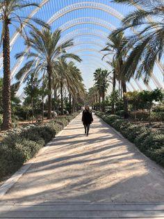 Valencia Guide: Meine Highlights & Tipps | meinreiseblog.at Valencia, Highlights, Parks, Madrid, Sidewalk, Instagram Posts, Travel, Beautiful, Europe