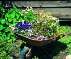 Charming wheelbarrow garden