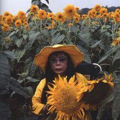cultureexpress:  Yayoi Kusama   Sunflower Dreamin'