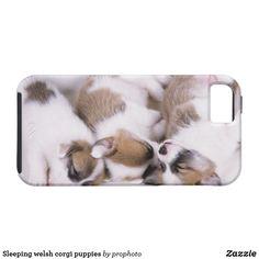 Sleeping welsh corgi puppies iPhone SE/5/5s case Corgi Phone Case, Welsh Corgi Puppies, 5s Cases, Iphone Se, Pet Dogs, Sleep, Animals, Animales, Animaux