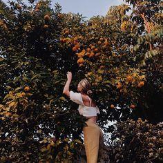 "926 Likes, 54 Comments - Michaela d'Artois (@michaeladartois) on Instagram: ""Skin made of olive oil. Feet stained with soil. Hands skilled at thieving lemons."""