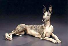 Ceramics by Elaine Peto at Studiopottery.co.uk - Reclining Dog, produced in 2007.