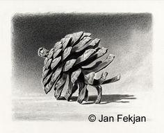 Jan Fekjan: Furukongle Living Room Art, Giclee Print, Draw, Fine Art, Prints, Artist, Pintura, Drawings, Nature