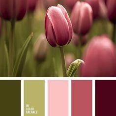 burdeos oscuro y verde, color burdeos, color burdeos oscuro, color de las tulipas, color rojo sonrosado, color tulipa rosada, color verde oliva, colores de las tulipas, colores de las tulipas rosadas, colores de los tallos, rojo sonrosado, rosado pálido, tonos rosados, tonos rosados y verdes, tonos