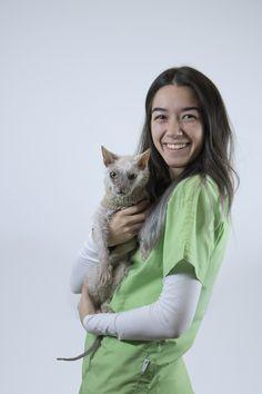 Zoe Stagl, Lehrling tierärztliche Ordinationsassistentin Cats, Animals, Animal Clinic, Pictures, Gatos, Animales, Kitty Cats, Animaux, Animal